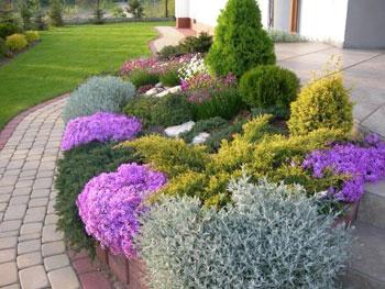 Czym nawozić rośliny uprawiane w donicach