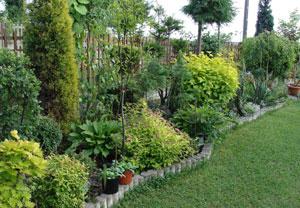 Jak obsadzić mały ogród